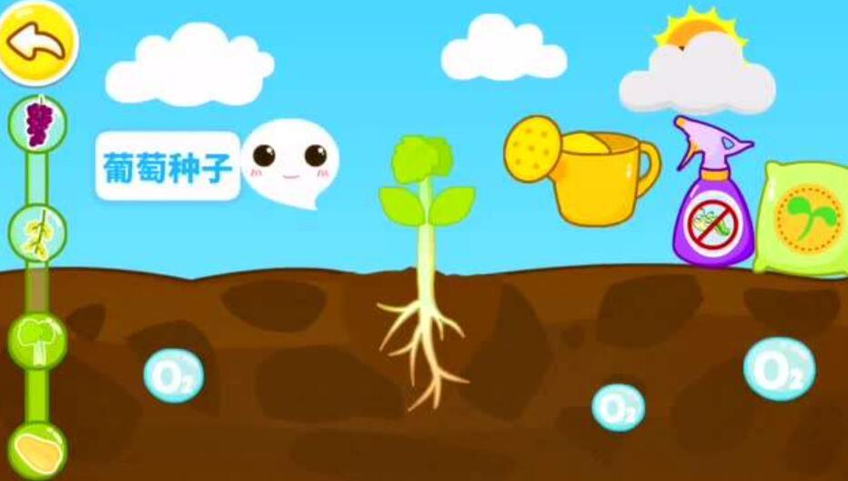 种子成长记.jpg