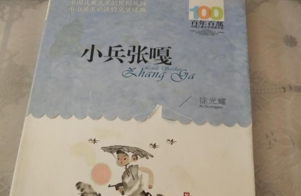 《小兵张嘎》书籍.jpg