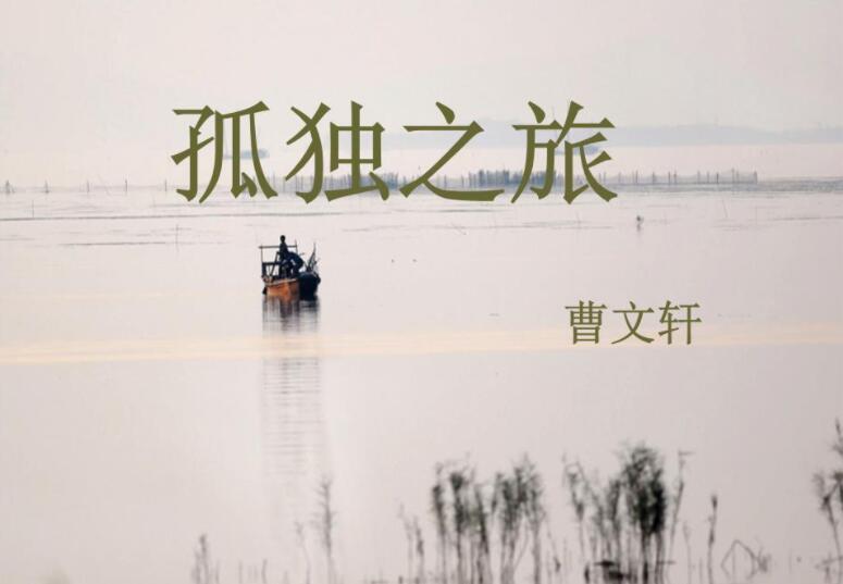 《孤独之旅》书籍.jpg
