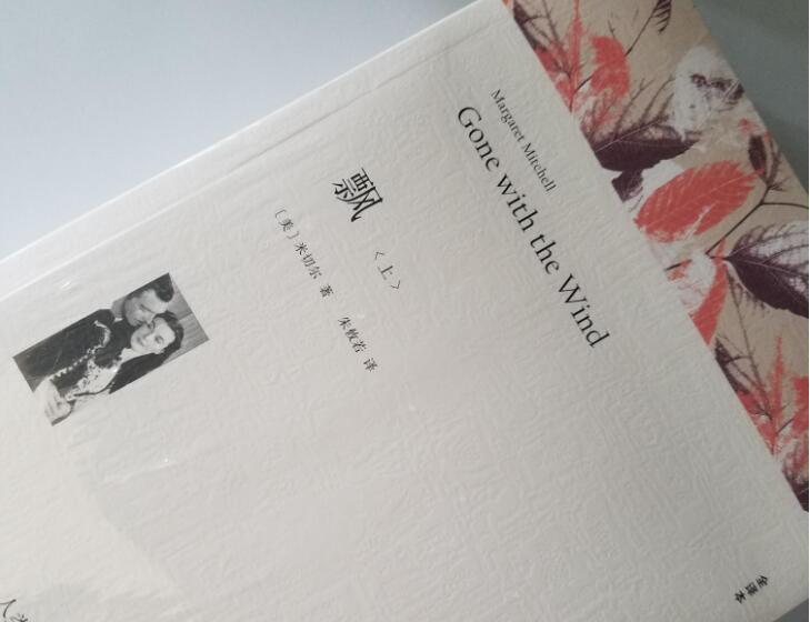 《飘》书籍.jpg